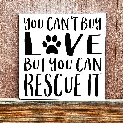 Amazon.com: Zora Camp Dog Sign Dog Quote Pet Rescue Sign You ...