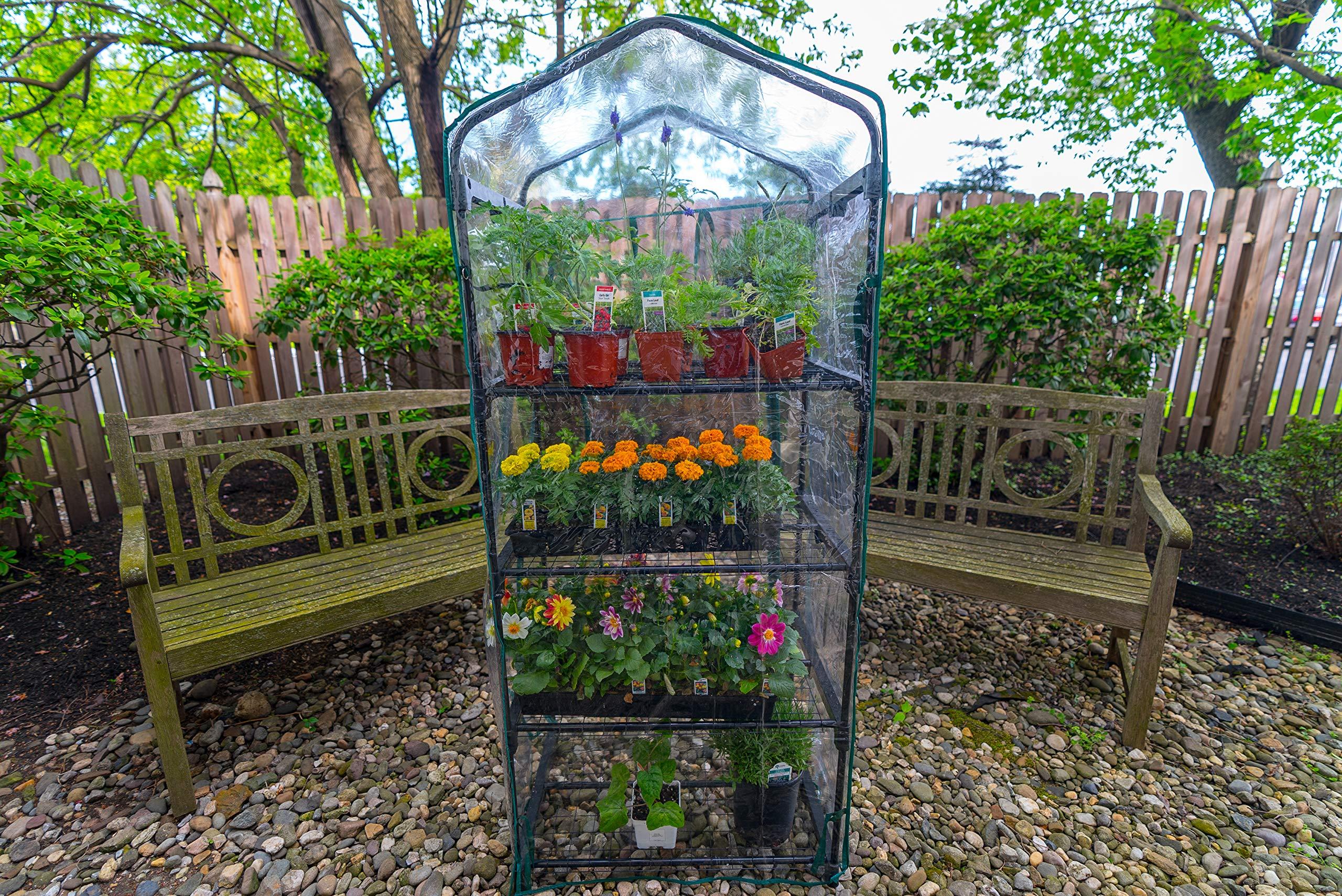 Gardman R687 4-Tier Mini Greenhouse, 27'' Long x 18'' Wide x 63'' High