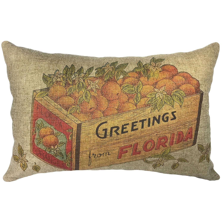"""TheWatsonShop Florida Oranges Throw Pillow, 18"""" x 12"""" Lumbar Pillow"""