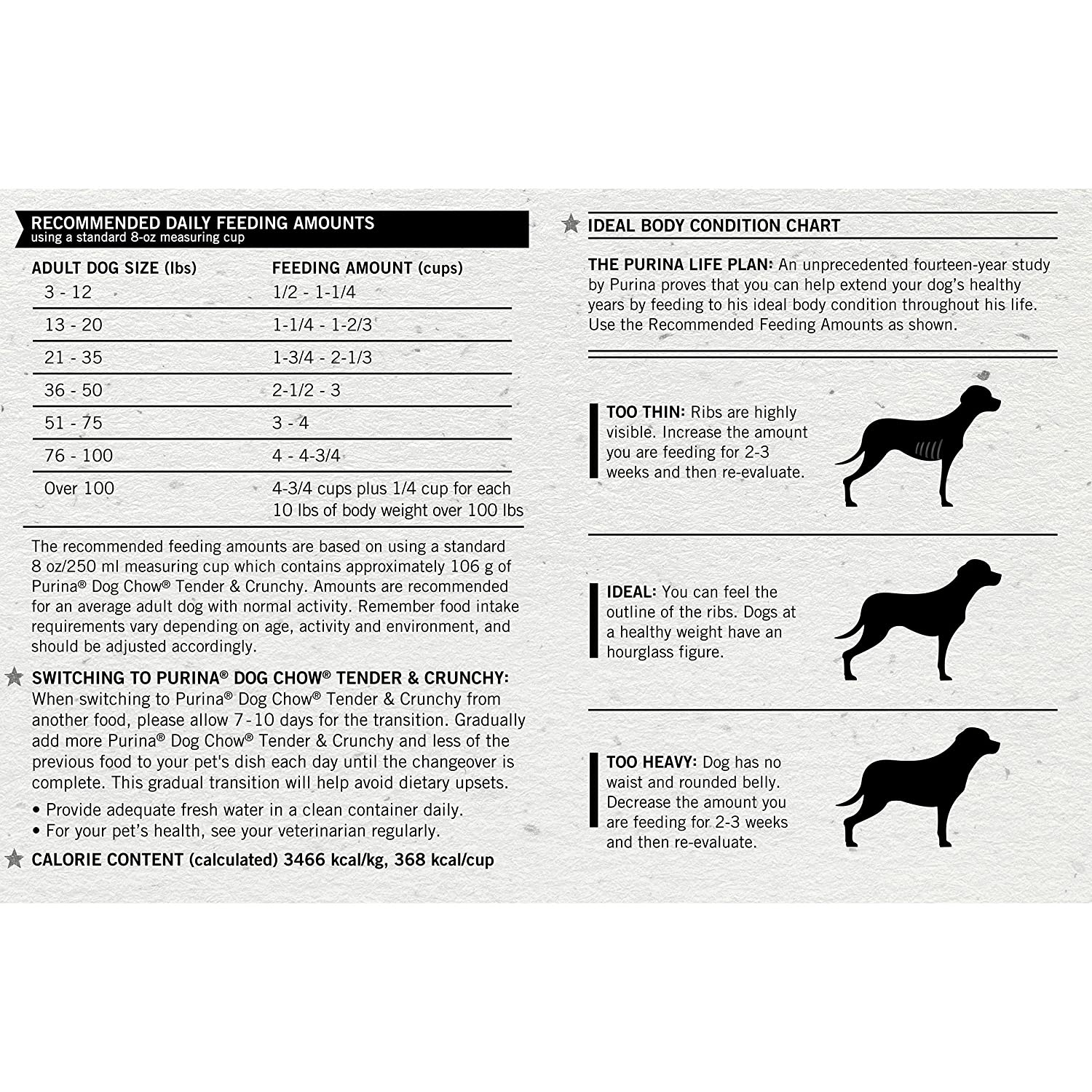 Yellow lab growth chart choice image free any chart examples chocolate lab growth chart choice image free any chart examples yellow lab weight chart gallery free nvjuhfo Images