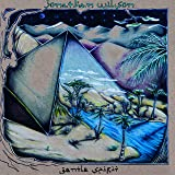 Jonathan Wilson Fanfare Amazon Com Music