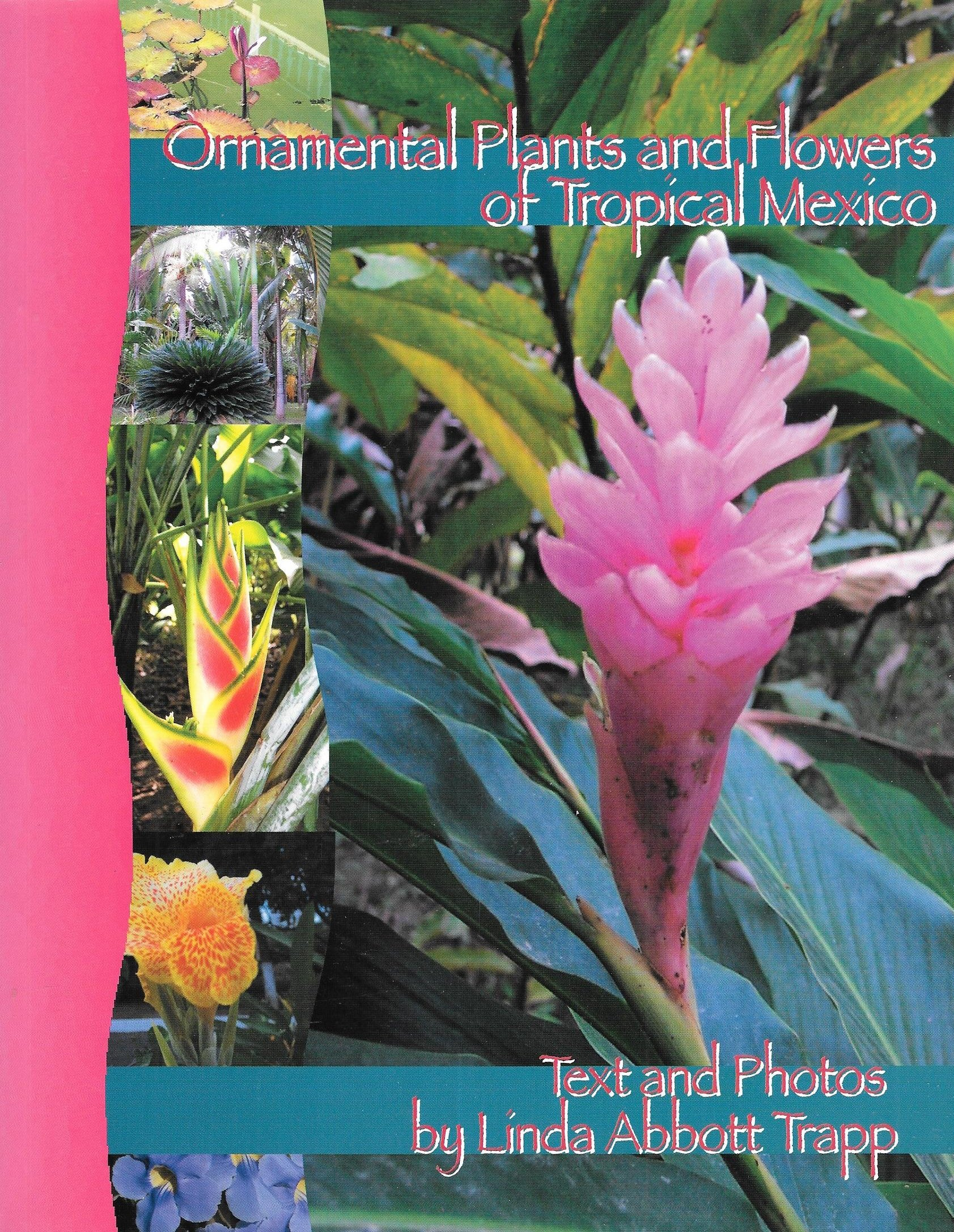 Download Ornamental Plants and Flowers of Tropical Mexico [Paperback] [2006] (Author) Linda Abbott Trapp pdf epub