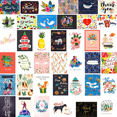 Amazon.com: Fresh & Lucky 40 tarjetas de felicitación de ...