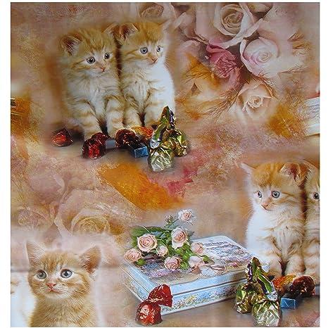 Hule Mantel 140 x 160 cm, gatos Kitten, cera Mantel: Amazon ...
