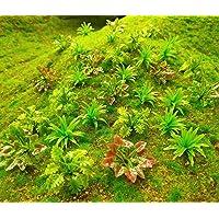 90pcs Mini Model Trees Plants Flowers Green Shrubs Bush Model, Aritificial Plants Model Train Scenery Architecture…