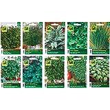 10 varietà | Assortimento di semi di erbe | oltre 60000 semi di erbe | Pacchetto di vantaggio | d'ora in poi il prezzo di promozione invernale