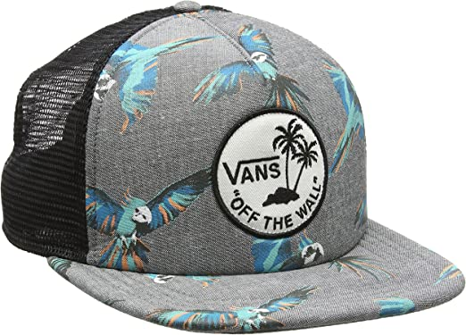 Vans Surf Patch Trucker Gorra de béisbol, Gris (Dirty Bird), Talla ...