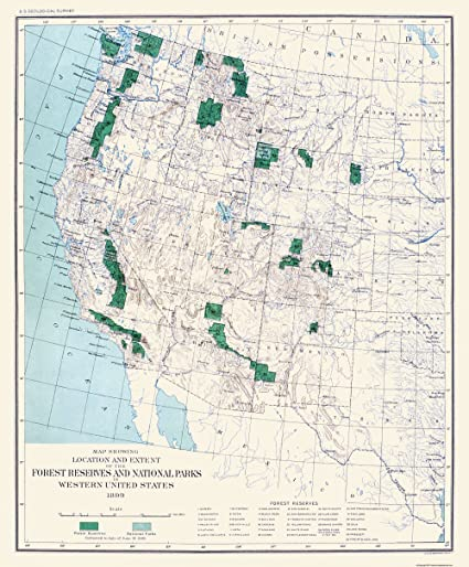 Amazon.com: Old State Map - Western Forest Reserves ...