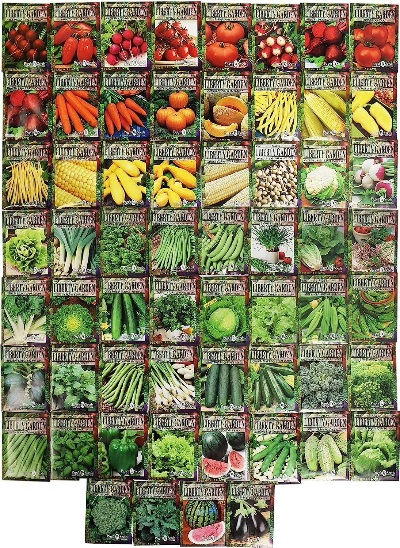 Set of 60 Premium Variety Herbs and Vegetables - Deluxe Garden Choices for Premium Gardening! (60 Premium Seeds)