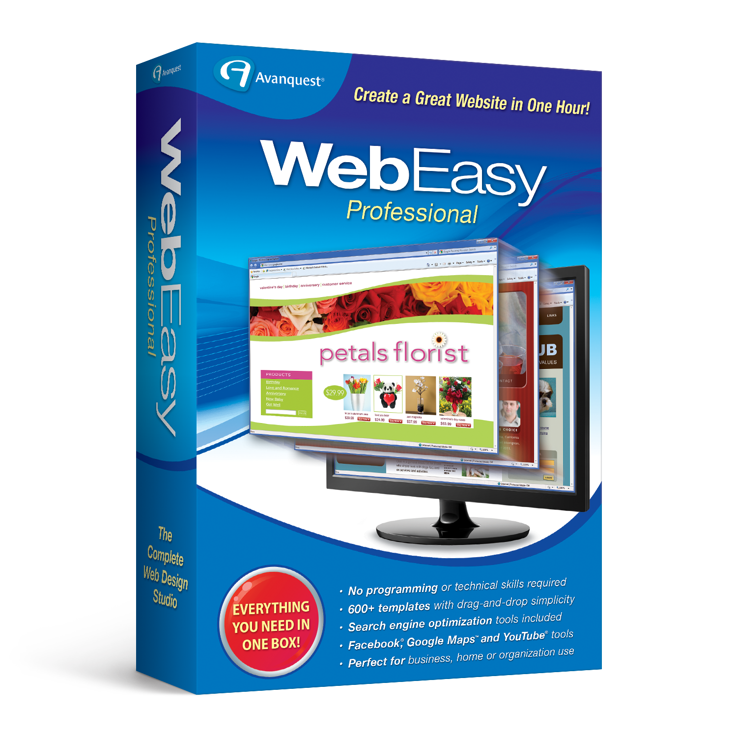 WebEasy Professional 10 [Download] (Search Engine Computer)