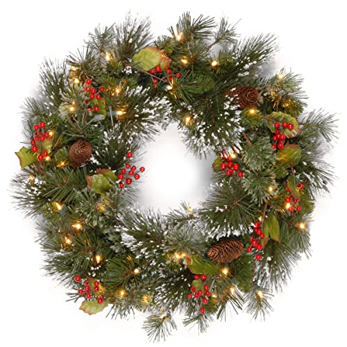 National Tree 24 Inch Wintry Pine Wreath with Cones, Red Berries,  Snowflakes and 50 - Artificial Christmas Wreaths With Lights: Amazon.com