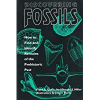 Discovering Fossils: How to Find and Identify Remains of the Prehistoric Past