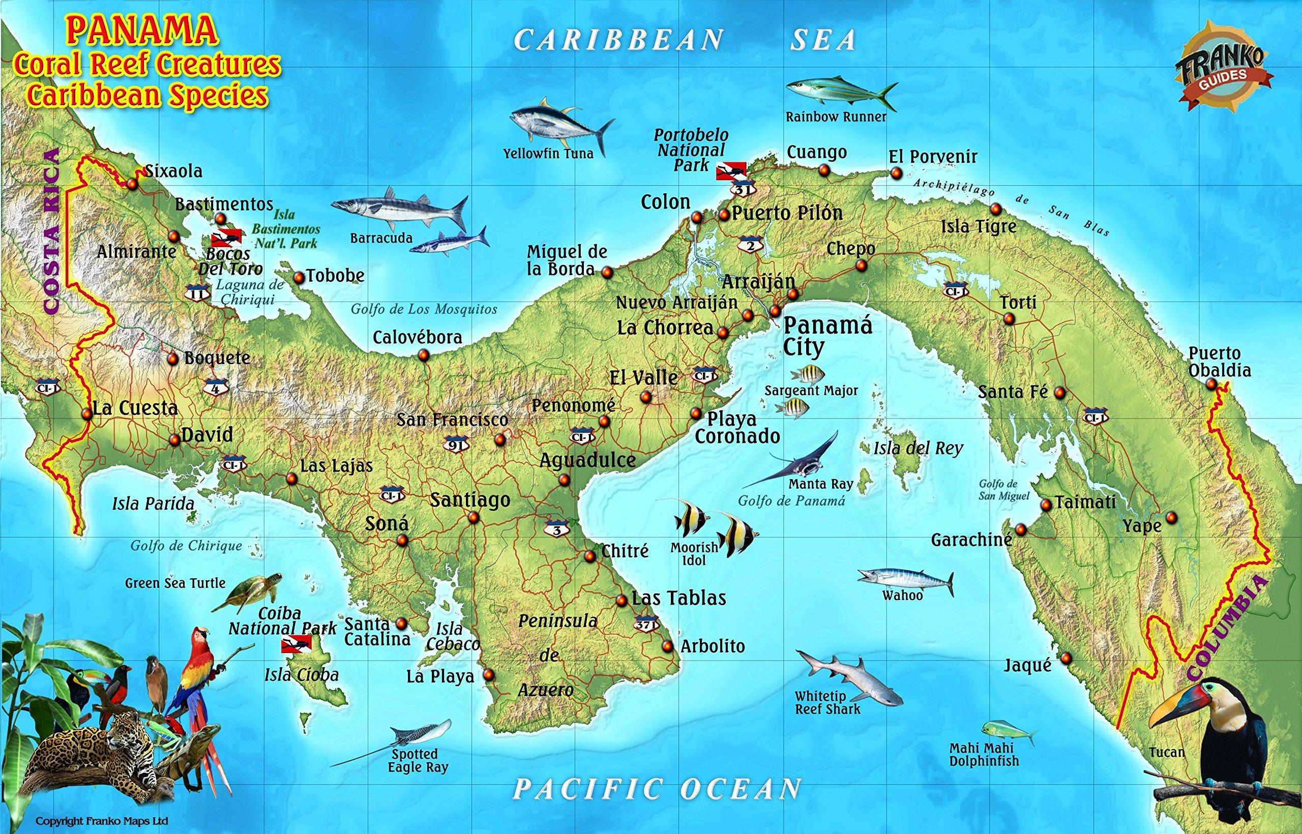 Panama Caribbean Coral Reef Creatures Guide Franko Maps ... on carti panama, large map of panama, atlas de panama, flag de panama, david panama, continental divide panama, rep de panama, mapa de panama, political map of panama, country of panama, map of panama central america, map of panama canal waterway, poblacion de panama, portobelo panama,
