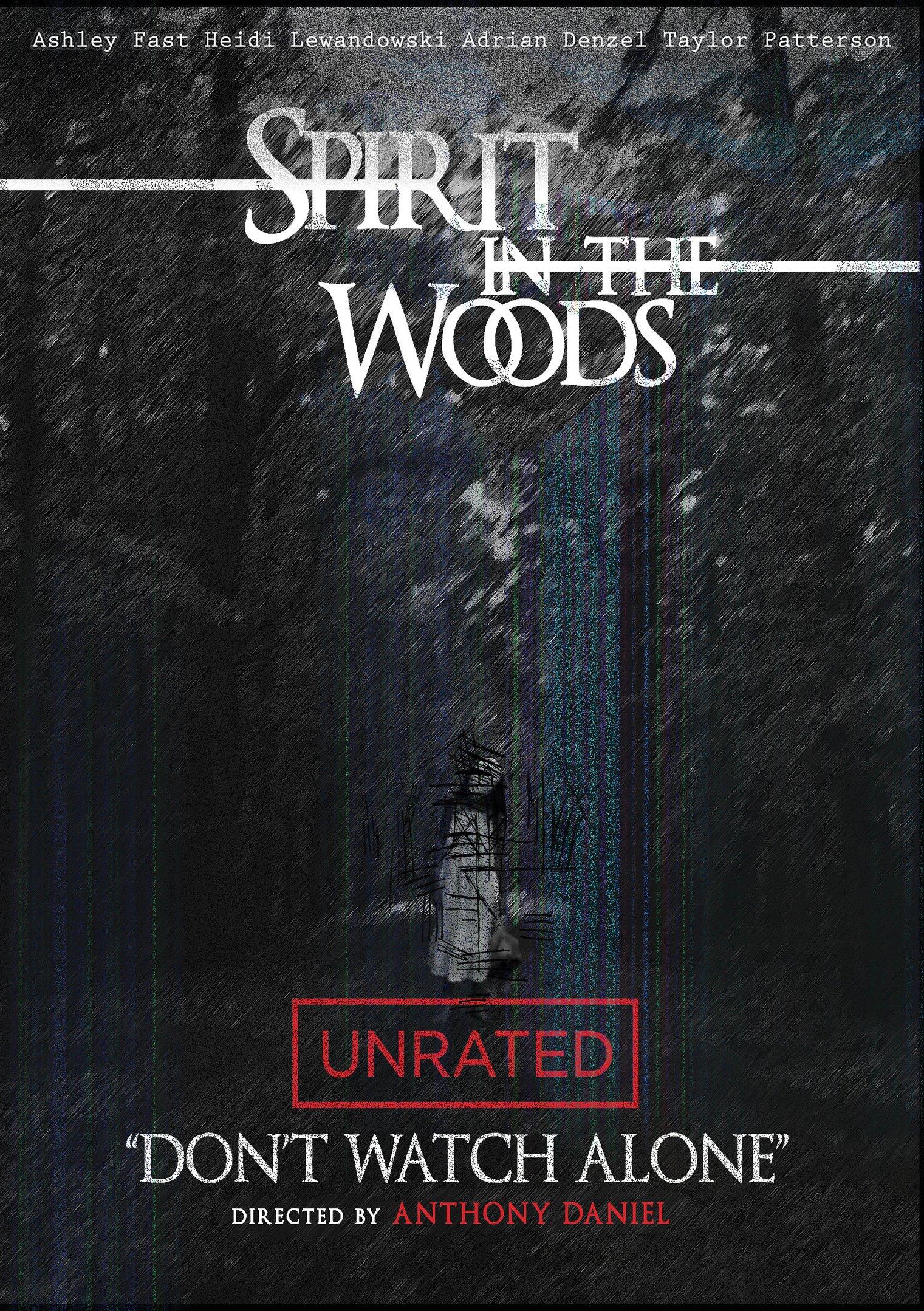 Spirit In The Woods (DVD)