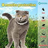 Cat Collar | Cat Flea Collars | Flea Tick