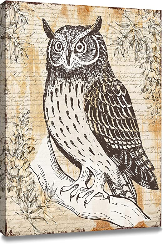 Owl Birds Kids Room CANVAS WALL ART DECO LARGE READY TO HANG NIGHT all siz
