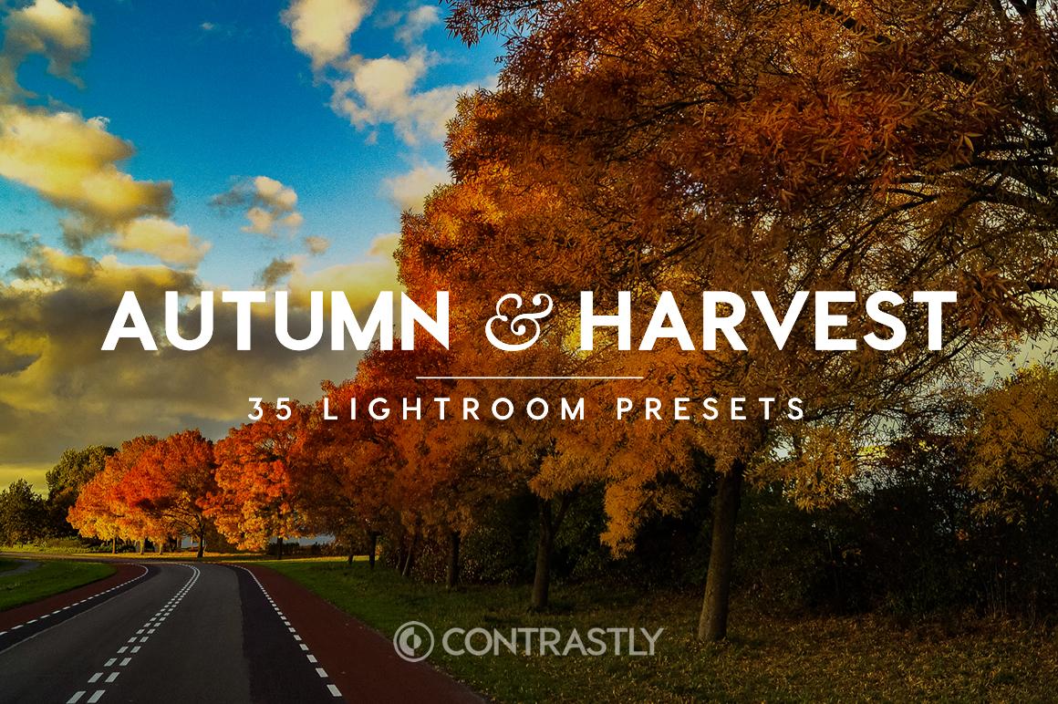 Autumn & Harvest Lightroom Presets [Download]