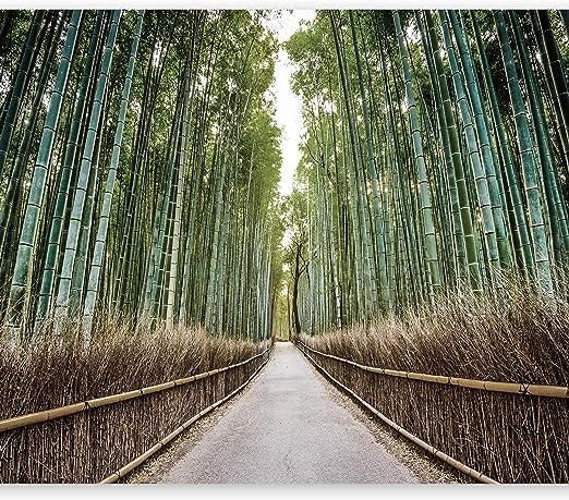 Amazon Artgeist 写真壁紙 竹の森 118インチxインチ 不織布 壁画 プレミアムプリント C B 0074 A C 壁紙