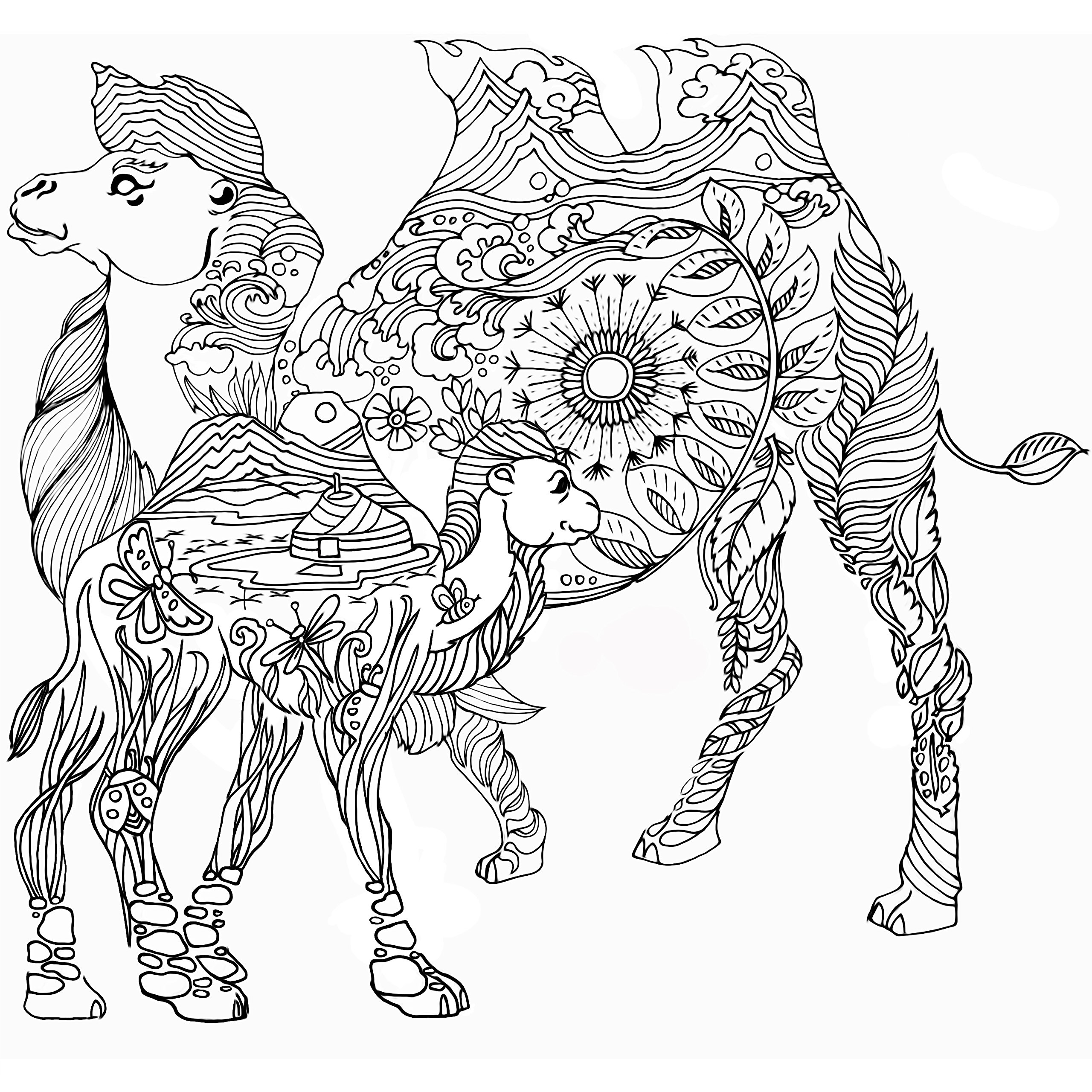 magnificent mongolia urambileg boldgarav zolboo ganbold itgel Mongolia Winter magnificent mongolia urambileg boldgarav zolboo ganbold itgel chuluunbaatar sugarjav altan ochir 9789997335562 amazon books