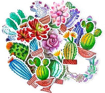 Navy Peony Pack de Pack de pegatinas Cactus Coloridos | Pequeños ...