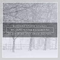 Blizzard Storm Sounds, Relaxing Winter Background, Heavy Wind and Snow Sounds