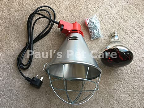 Lámpara de calor radiante por infrarrojos y bombilla roja con interruptor bajo para perro, cachorro