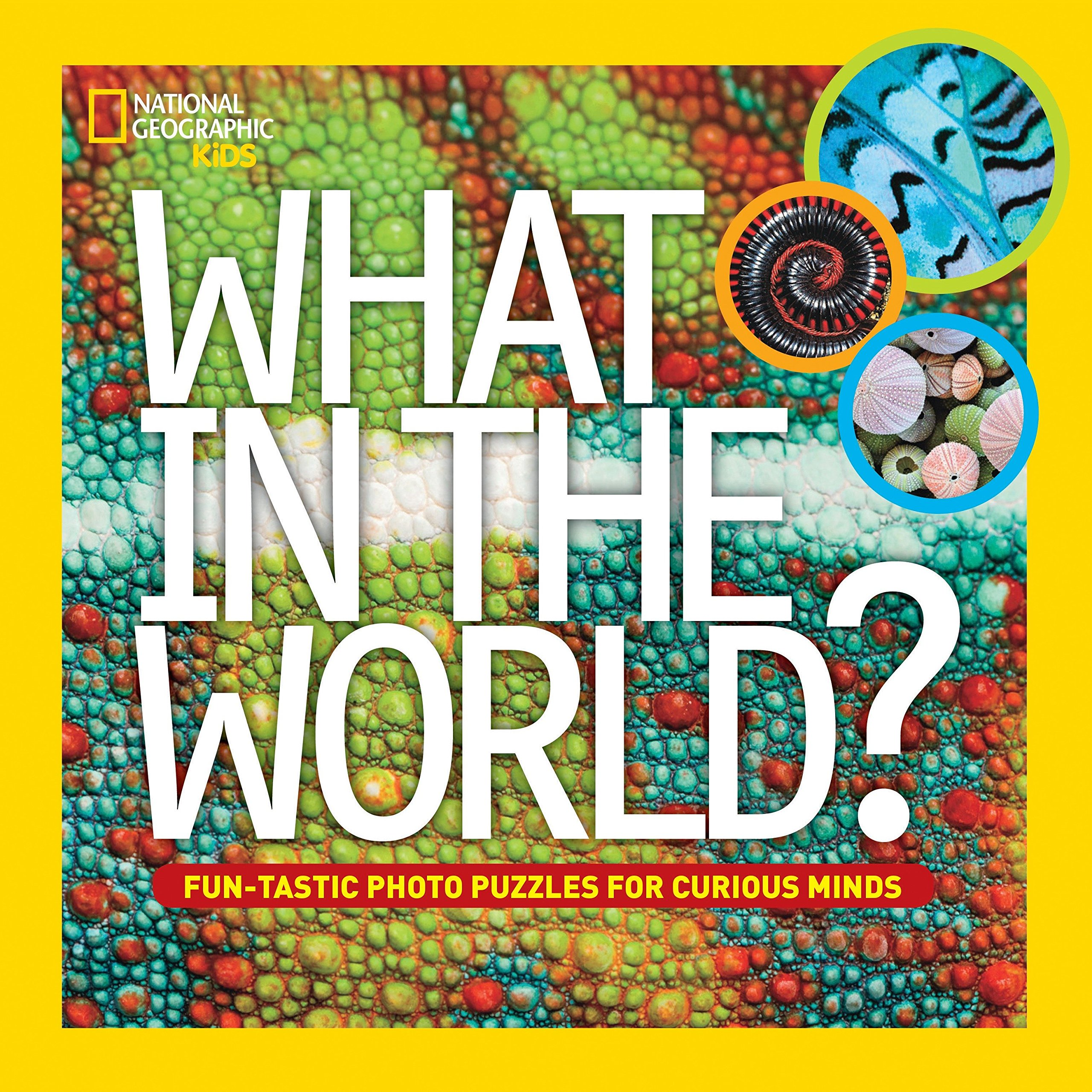 What In The World   Fun Tastic Photo Puzzles For Curious Minds  National Geographic Kids