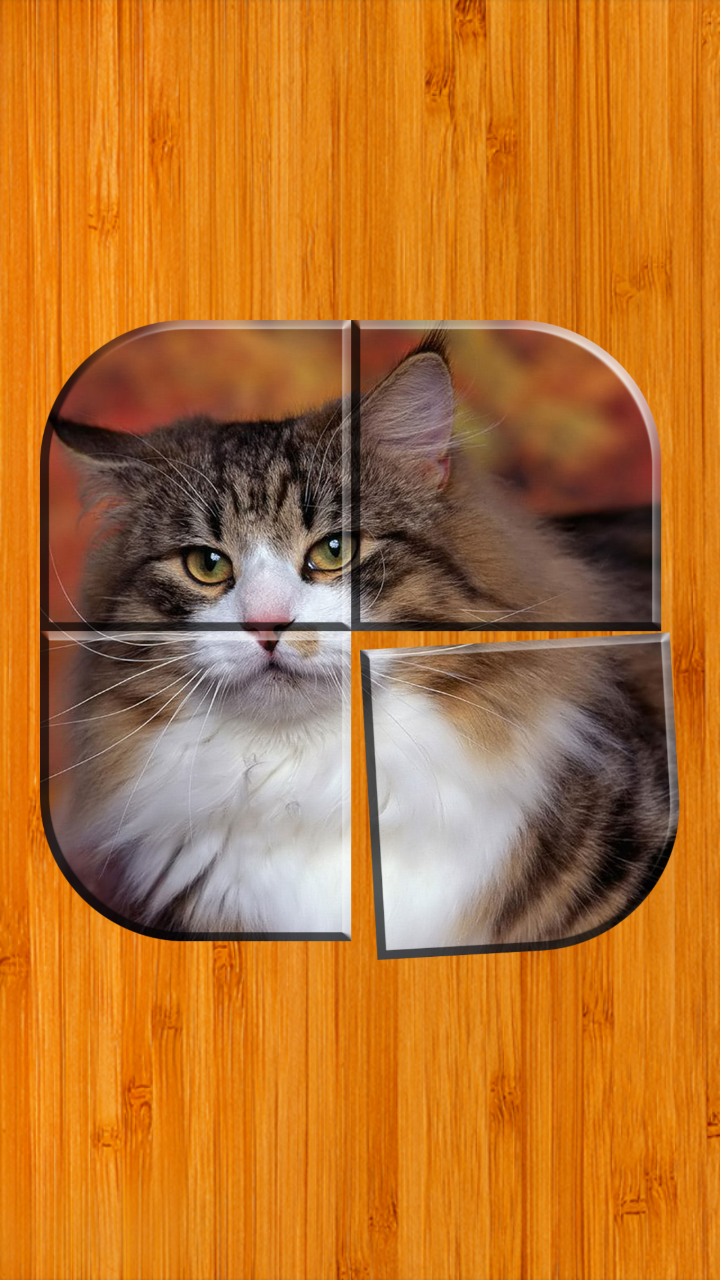Amazon.com: Best Cat Puzzle Games Free: Appstore for Android
