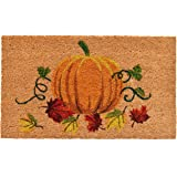 """Calloway Mills 121981729 Nature's Bounty Doormat, 17"""" x 29"""", Multicolor"""