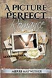 A Picture Perfect Romance (Ashbrook, Montana Book 5)