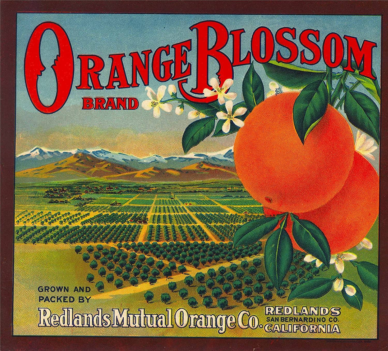Redlands San Bernardino California Moon Orange Citrus Fruit Crate Label Print