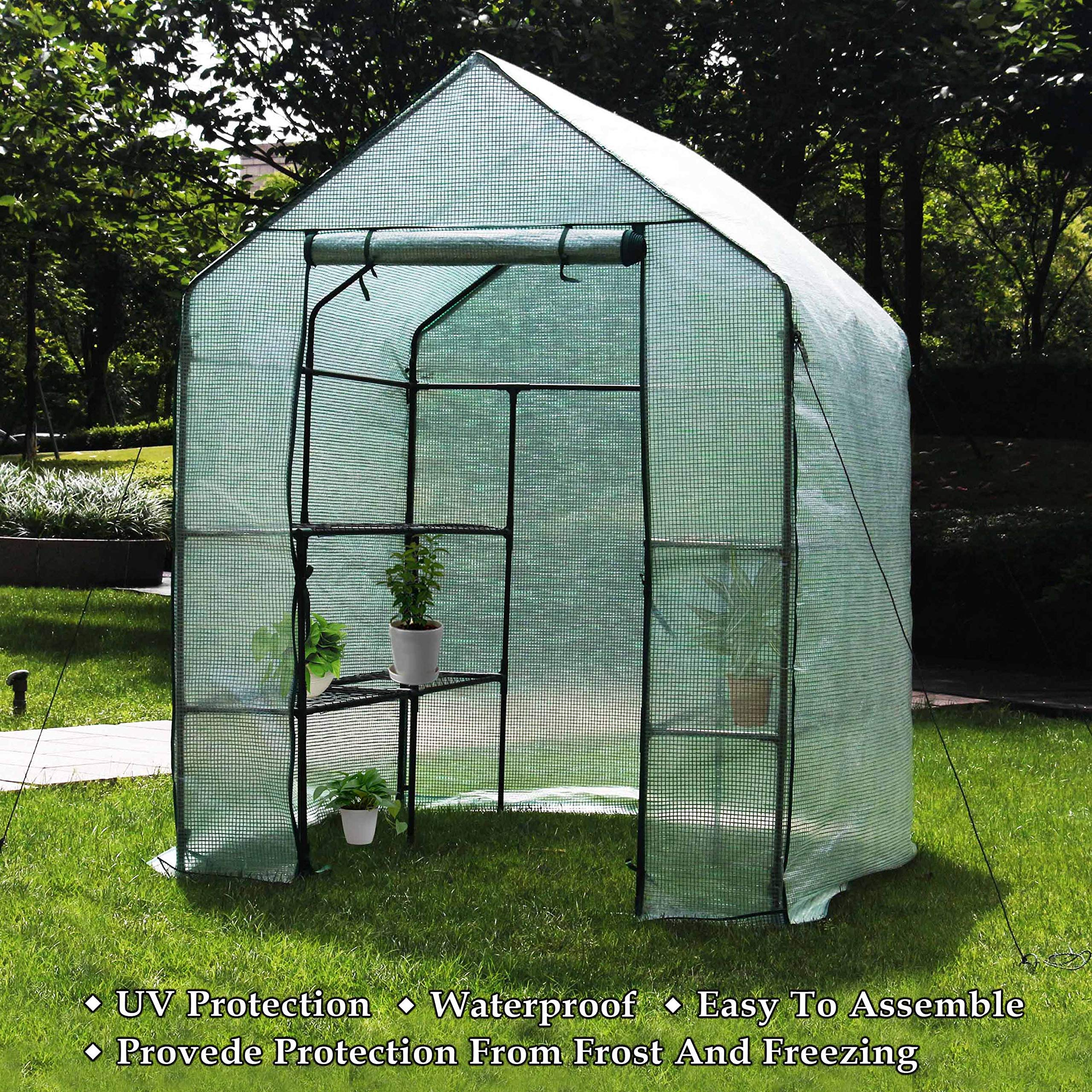 Deluxe Green House 56'' W x 56'' D x 77'' H,Walk In Outdoor Plant Gardening Greenhouse,3 Tiers 6 Shelves (56'' W x 56'' D x 77'' H)