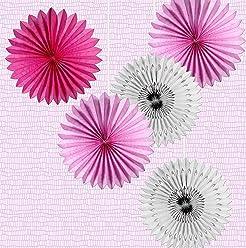 EinsSein 5er Mix Dekofächer Rosenzaun Papierfächer Papierblume Pom Poms Papierrosette Dekoration