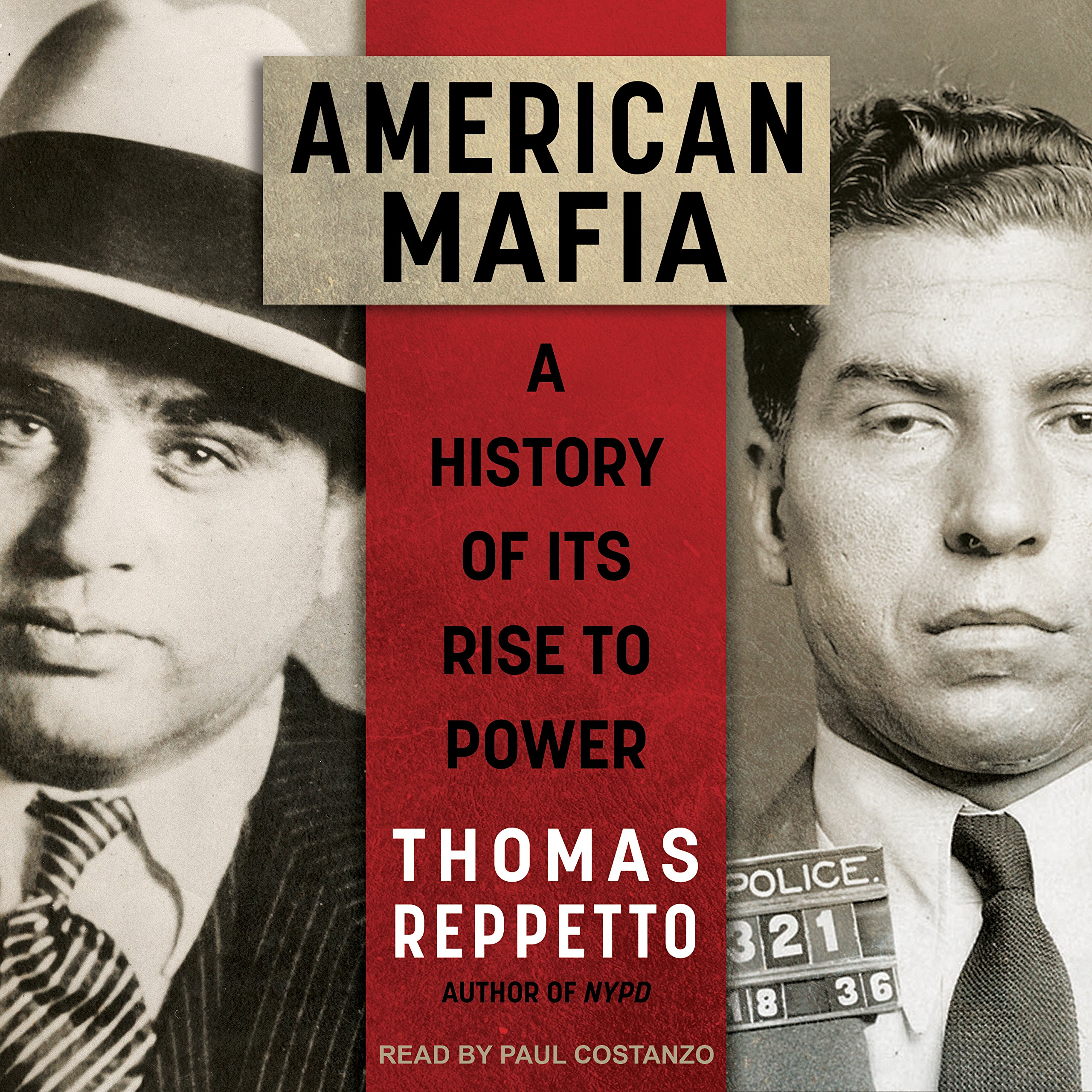Download American Mafia: A History of Its Rise to Power PDF