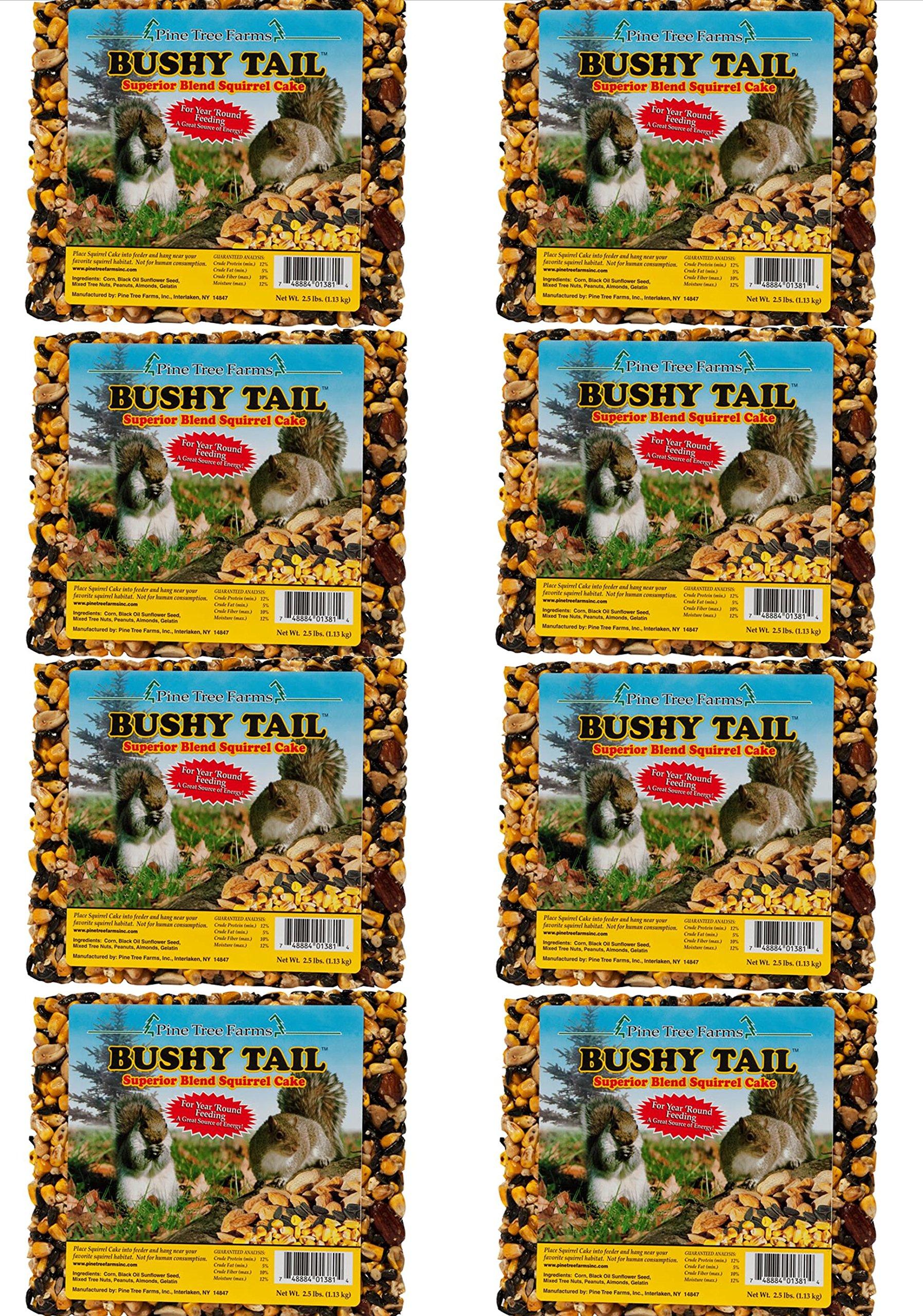 Pine Tree Farms 8 Pack, 1381 Bushy Tail 2.5 Pound Squirrel Cake