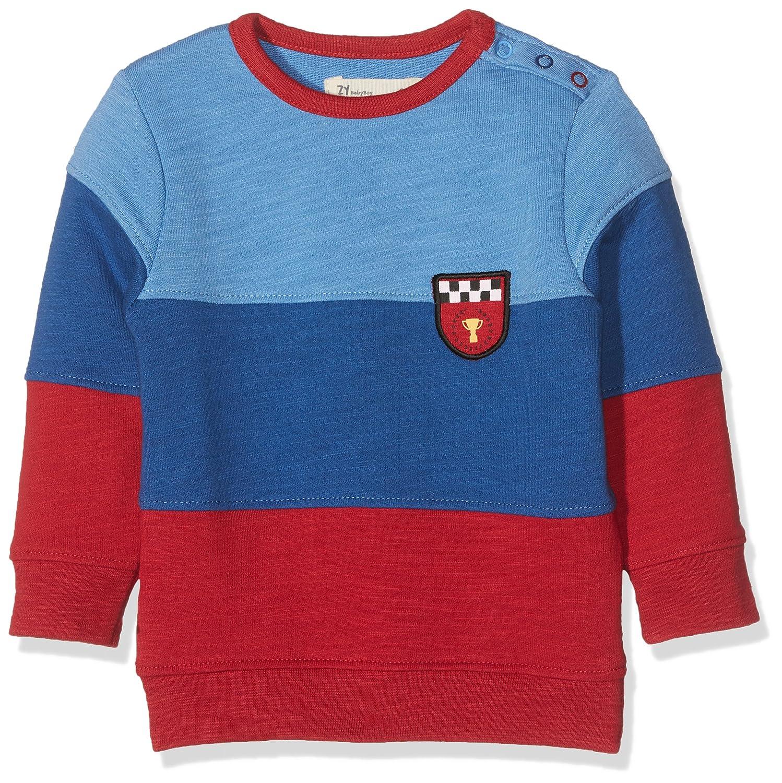 Zippy Sweat-Shirt Bébé garçon ZTB06_410_3