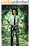 Turning the Stone (The Blood Rites Trilogy Book 2)