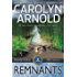 Remnants (Brandon Fisher FBI Series Book 6)
