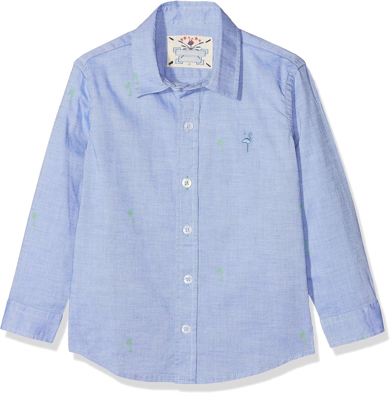 EL FLAMENCO Casual Camisa, Azul (Azul 1), 16 años (Tamaño del Fabricante:16) para Niños: Amazon.es: Ropa y accesorios