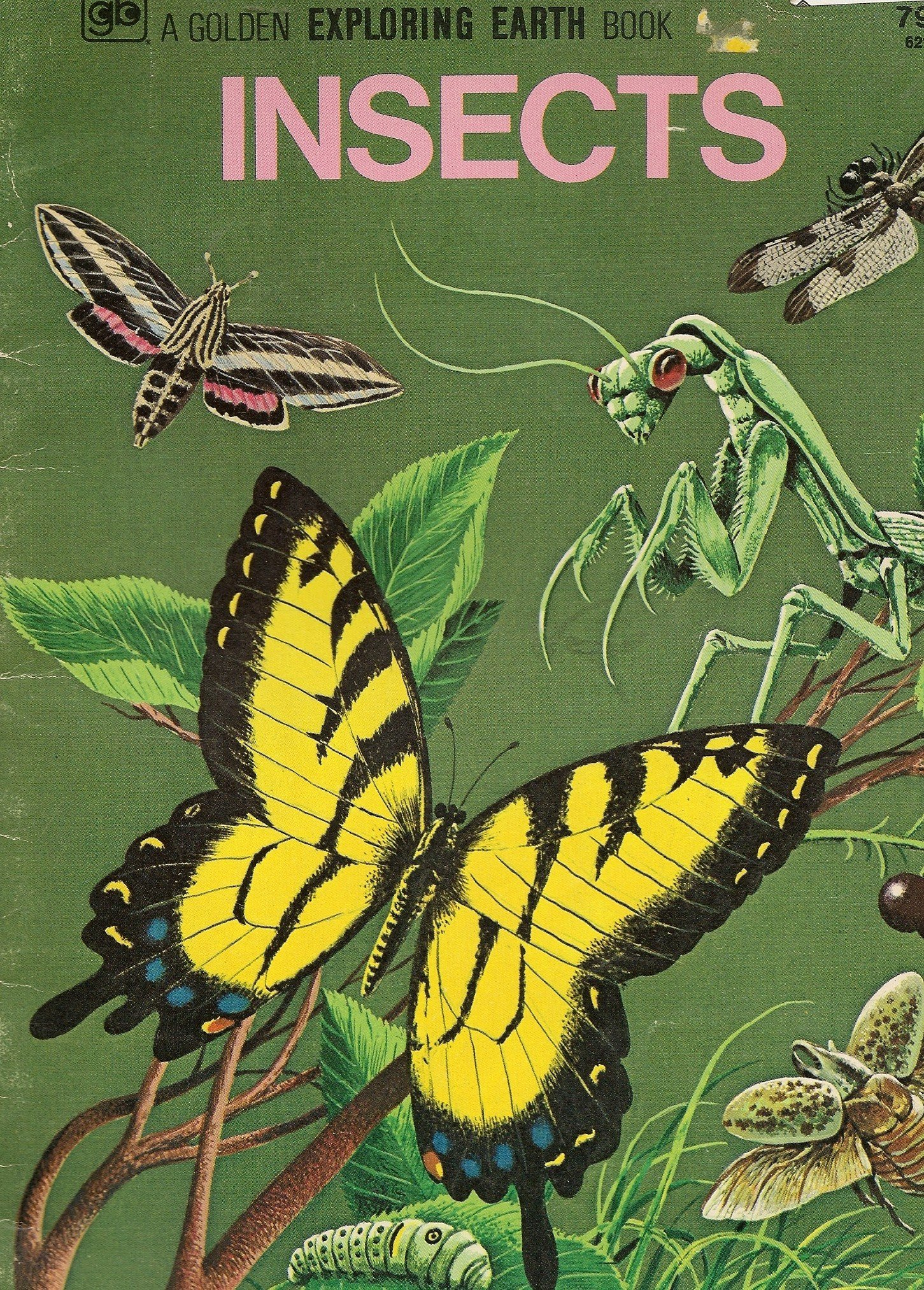 Insects - A Golden Exploring the Earth Book