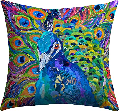 Deny Designs Elizabeth St Hilaire Nelson Cacophony of Color Outdoor Throw Pillow, 20 x 20