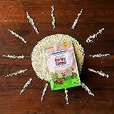 Healthy Times Organic Whole Grain Barley Baby