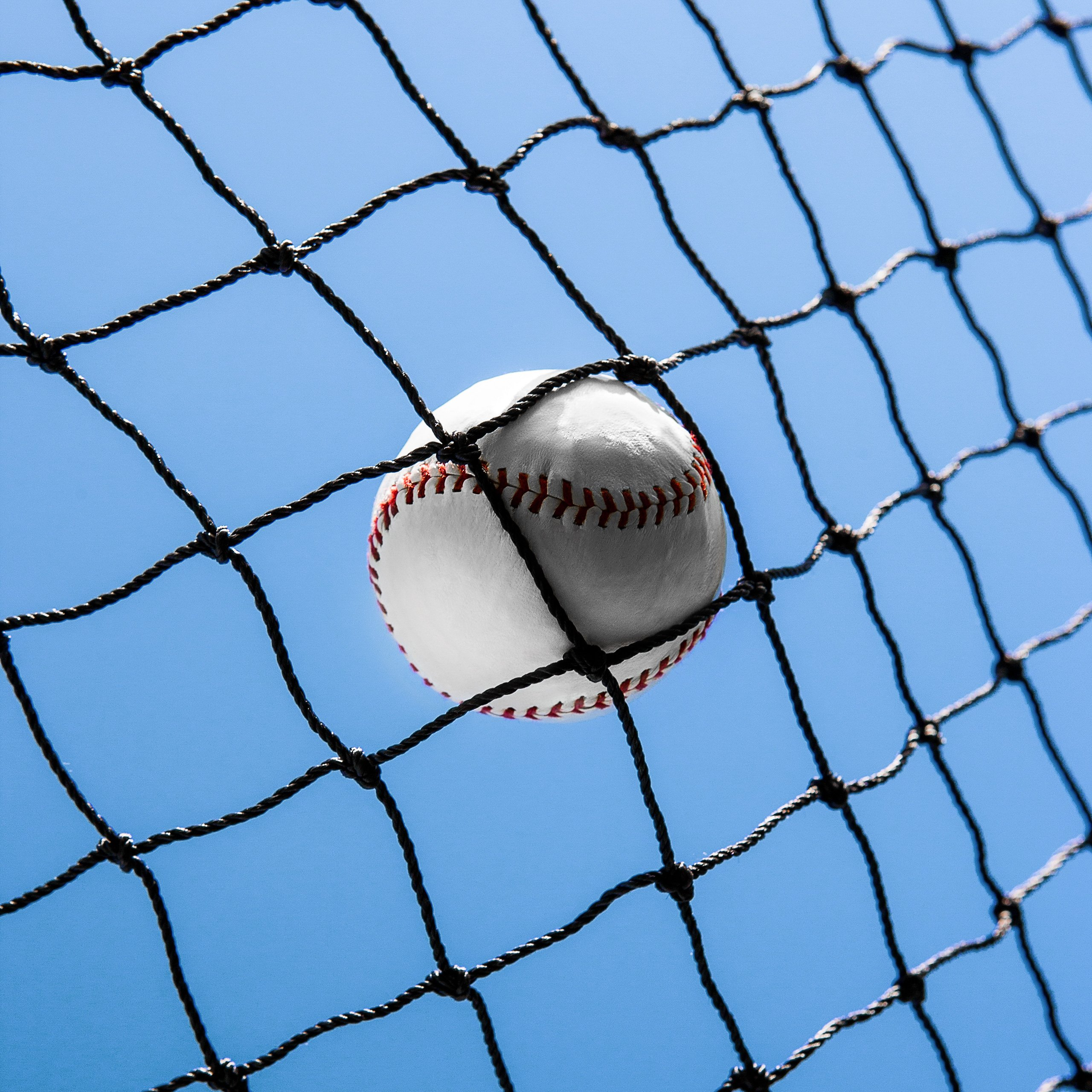 50 Sizes   Pro Grade Baseball Softball Netting 100/% Weatherproof Baseball Backstop Nets