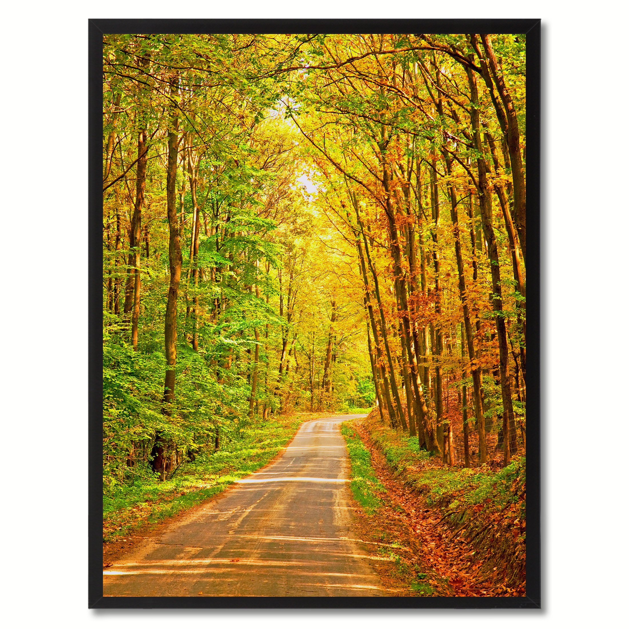 Forest Wood Landscape Photo Canvas Print with Picture Frame Home ...