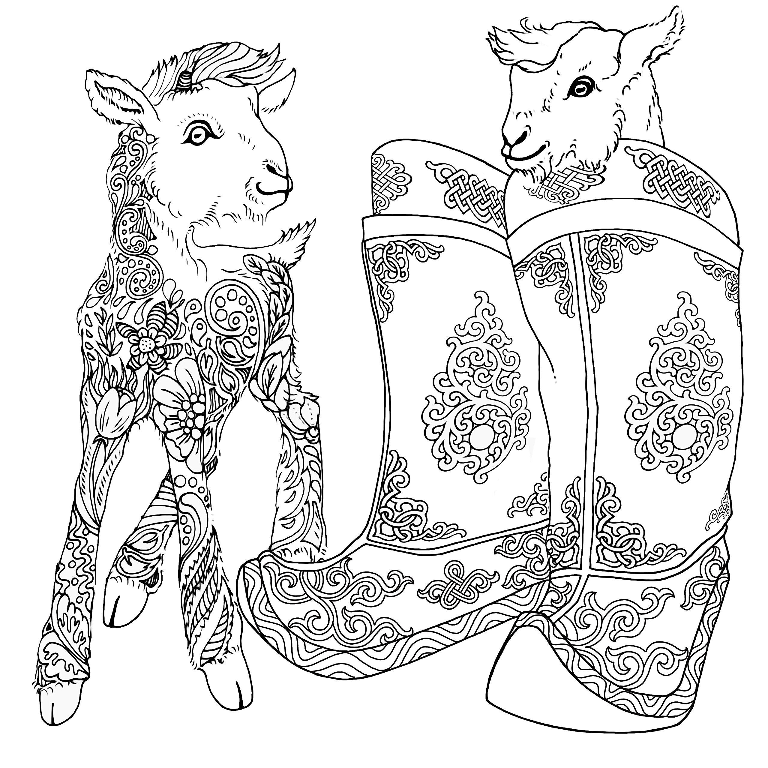 magnificent mongolia urambileg boldgarav zolboo ganbold itgel Mongolian Fashion magnificent mongolia urambileg boldgarav zolboo ganbold itgel chuluunbaatar sugarjav altan ochir 9789997335562 amazon books