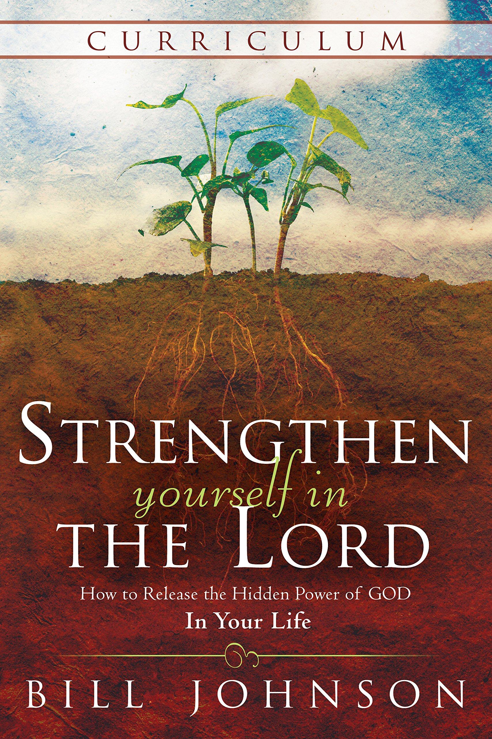 Strengthen Yourself in the Lord Curriculum: How to Release the Hidden Power of God in Your Life pdf epub