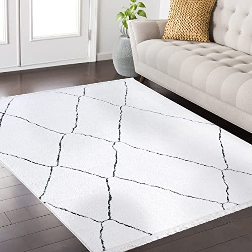 Mod-Arte Fez Collection Area Rug Moroccan Inspired Style White Charcoal 3 9 x 5 2