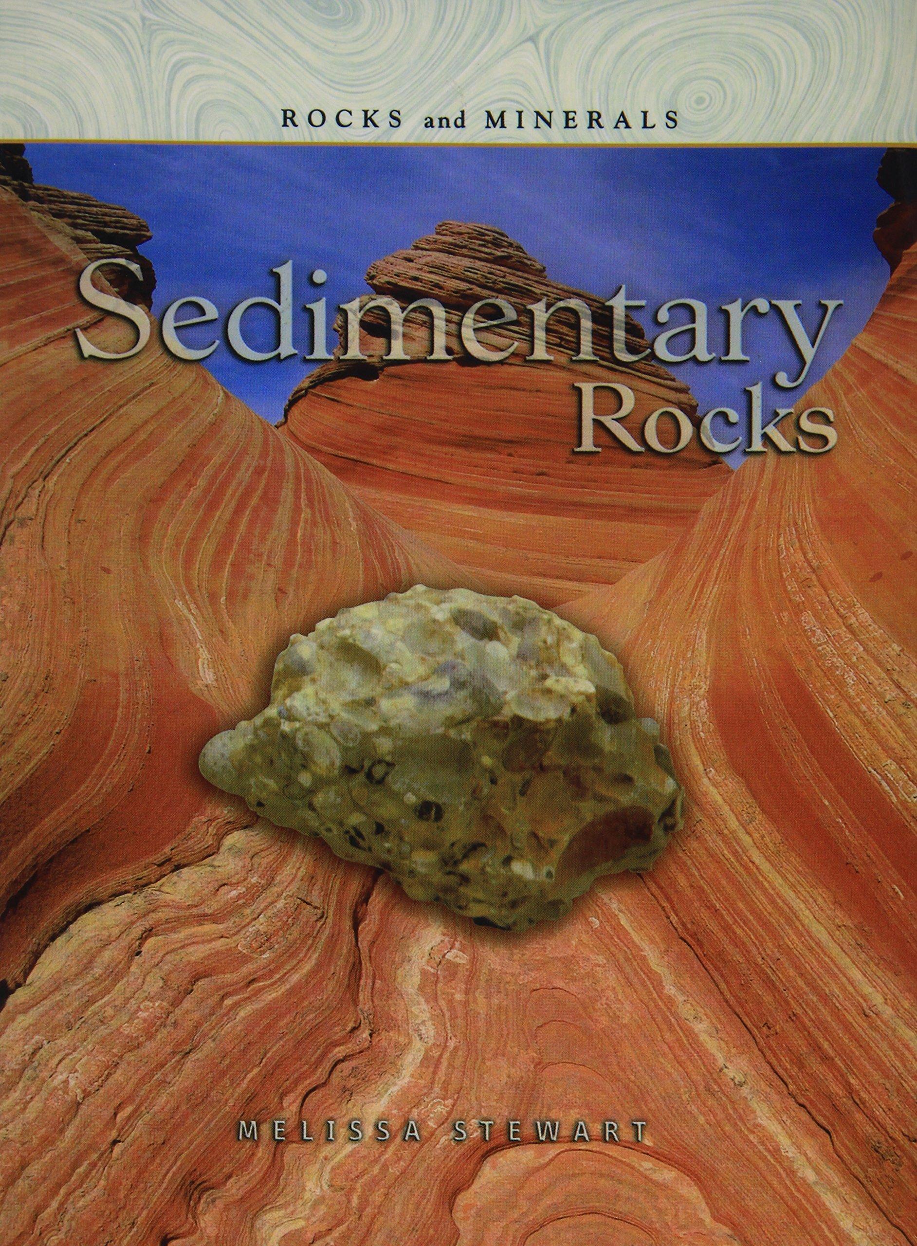 Sedimentary Rocks (Rocks and Minerals) PDF
