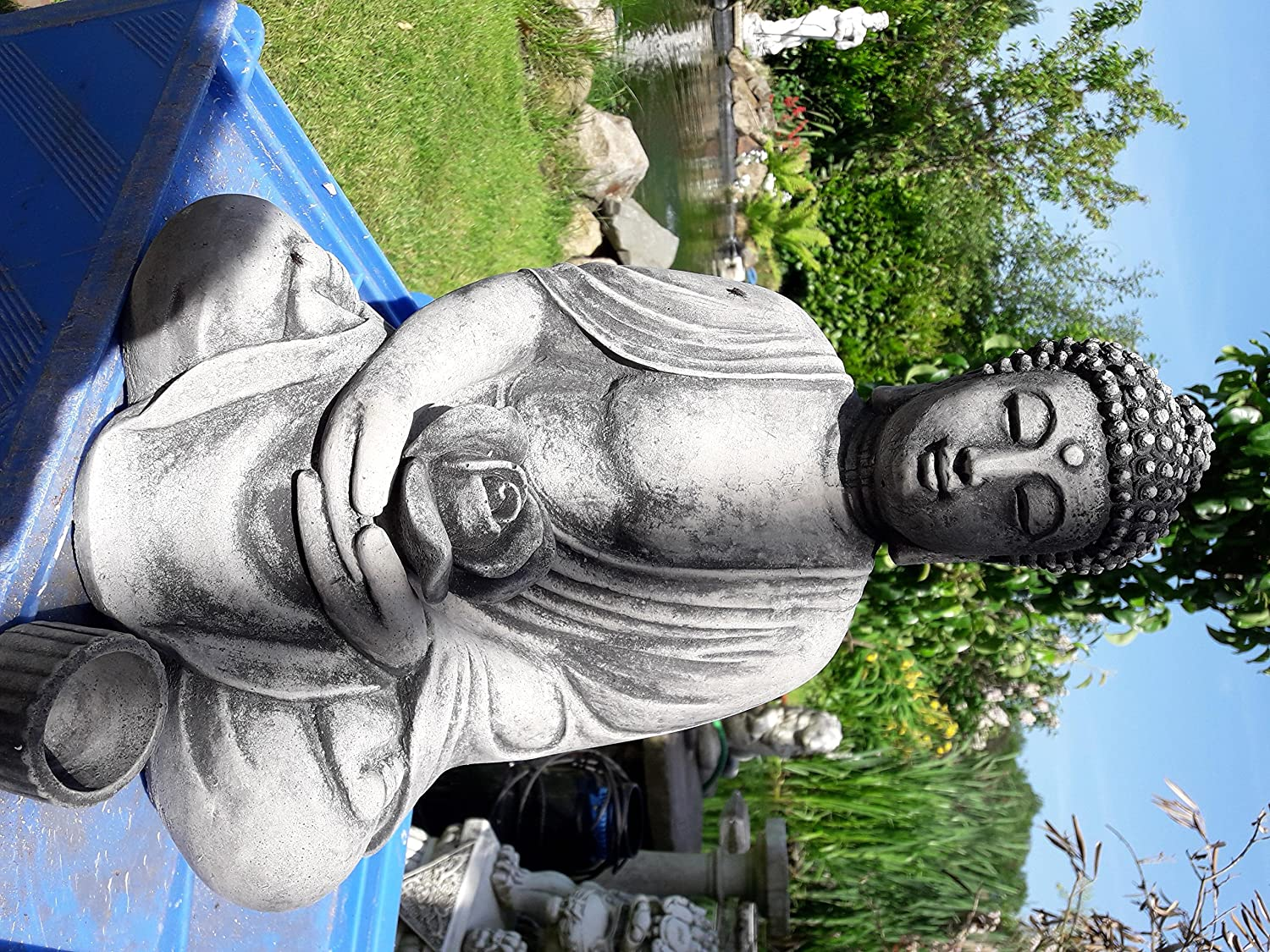 12 Gifts Of Christmas Cast.The Buddha In The Garden Buddha Rama With Water Lily