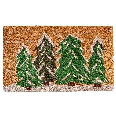 Calloway Mills 122251729 Winter Wonderland Doormat, 17  x 29 , Multicolor